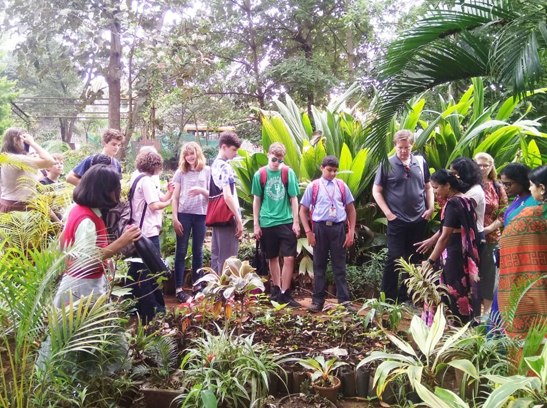visit to the hub of rare, medicinal plants